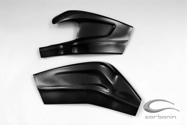 Carbonin CARBON Schwingenschutz BMW S1000RR Bj. 09-